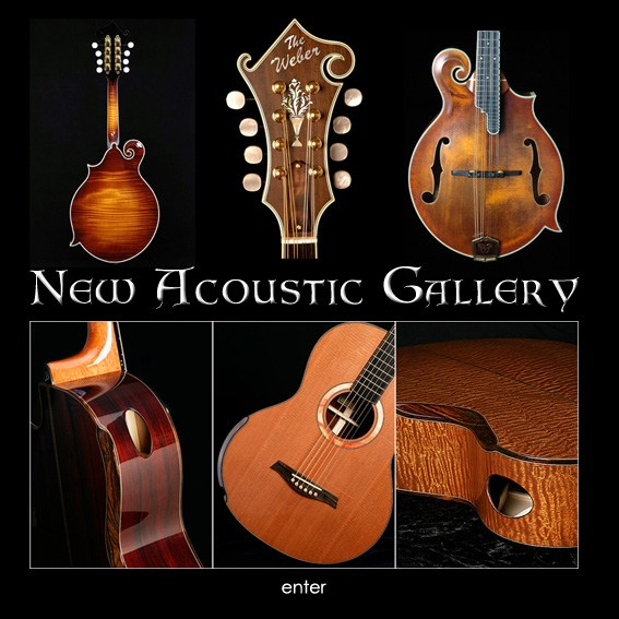 New Acoustic Gallery